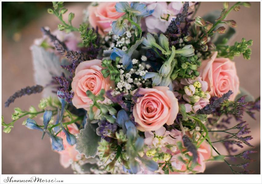 LisaTony_Vacaville_Taber_Ranch_Wedding_0002