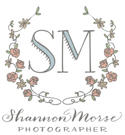 Shannon Morse Blog logo